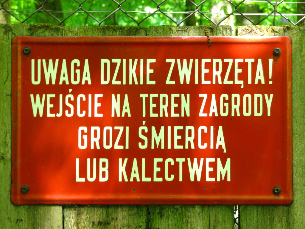 Pokazowy rezerwat żubrów
