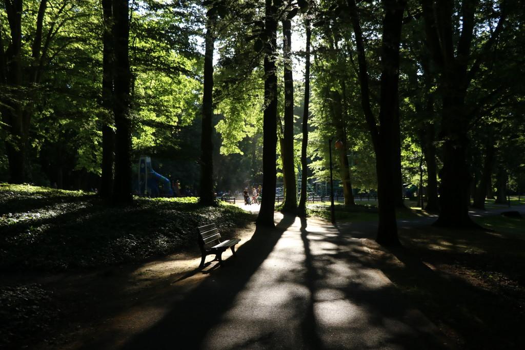 Park Sołacki Poznań (5)