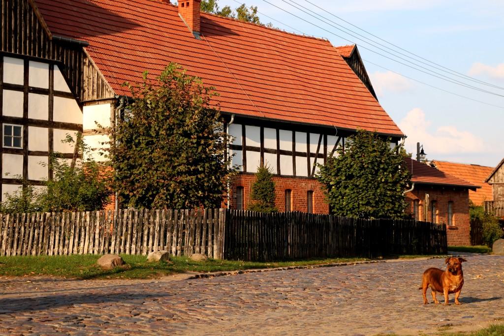 Kraina w Kratę - Swołowo