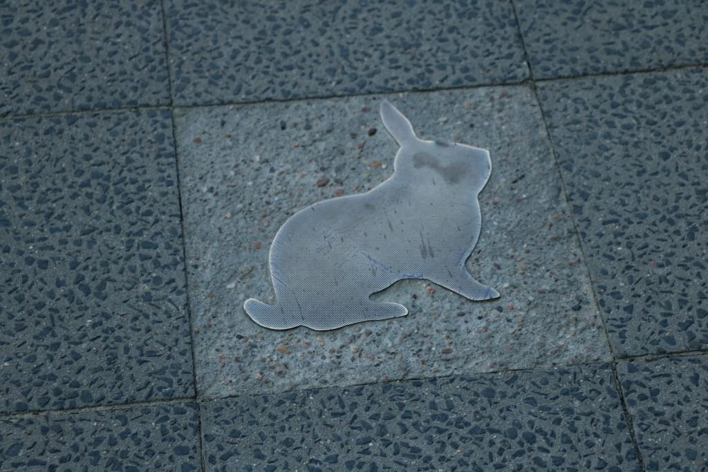 Berlin na weekend - berlińskie króliki