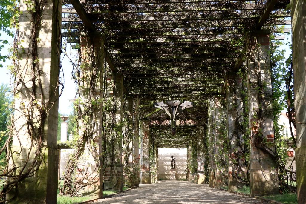 Ogród przed zamkiem Branitz