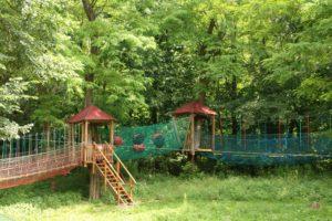 Parki Linowy Nowe Zoo