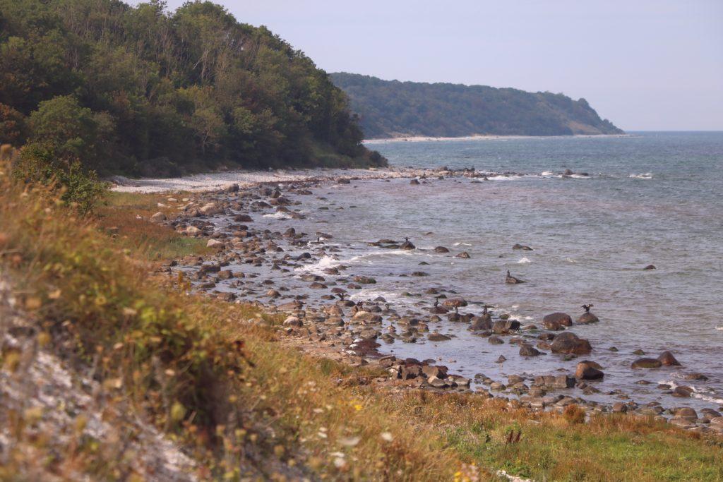 Rugia - Arkona