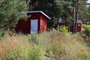 Nadwarciański Park Krajobrazowy - norweska wioska Arendel