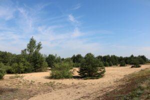Nadwarciański Park Krajobrazowy